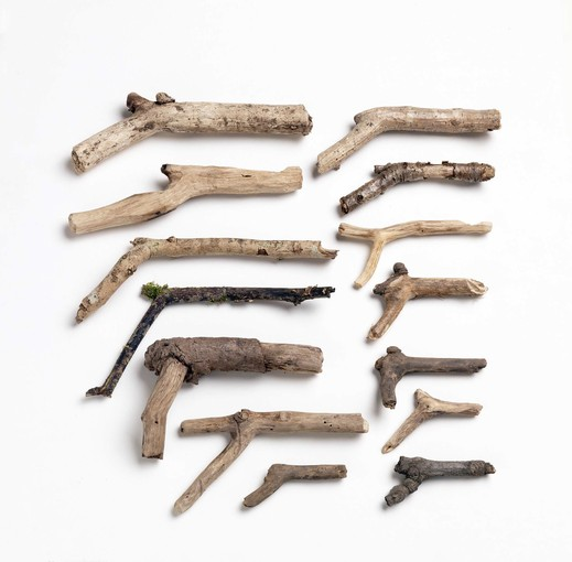 gun-shaped sticks