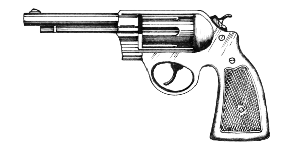 Revolver by Pearson Scott Foresman